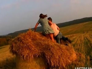 Sweet fucking at the hay field