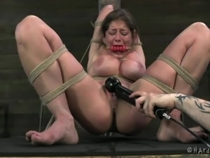felony tied up and tortured