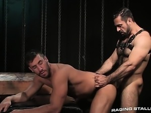 hairy stud with foreskin fucks horny hunky bottom. they cum