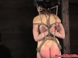 Box tied submissive being punished