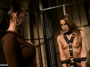 Brunette Mandy Bright with juicy jugs gets her honeypot attacked by Andy...
