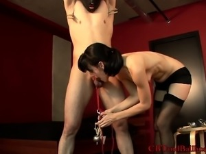 Dark-haired young hottie loves playing with a bound man's pecker