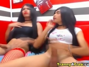 Super Horny Tranny Love To Suck And Fuck Her Partner