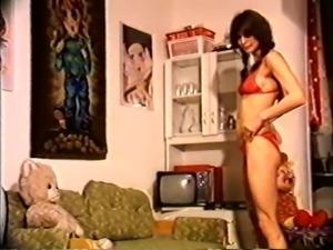 Perverse Ehefrauen (1980s)